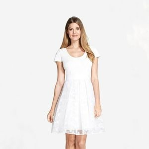 Plenty by Tracy Reese Zoe Dress in Ivory 0 NWT